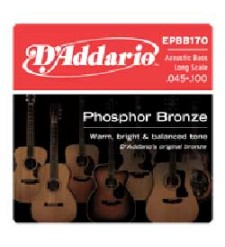 D'Addario EPBB170 45-100 Acoustic Bass  string set 