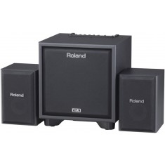 Roland Cube CM-110 2.1 Monitoring System for Electronic Instruments (Black)
