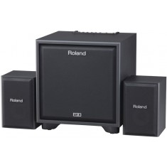 Roland Cube CM-220 2.1 Monitoring System for Electronic Instruments